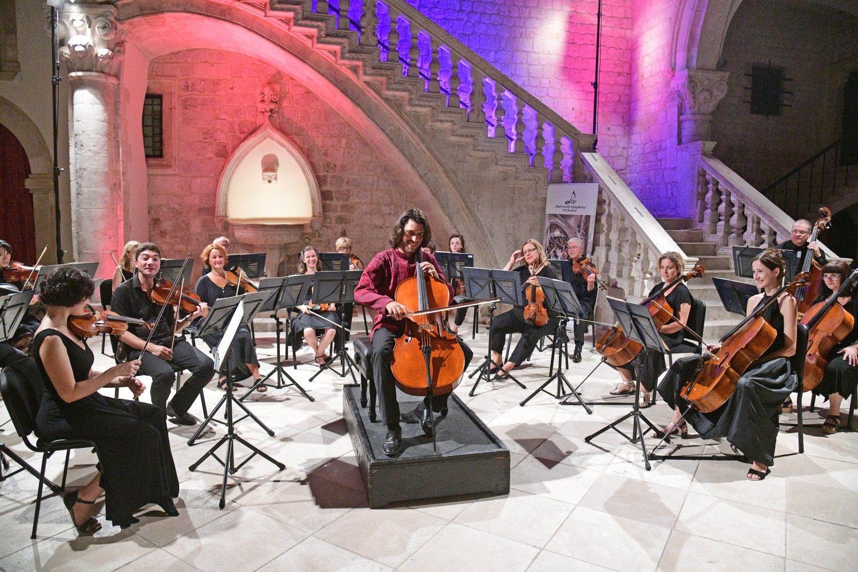 koncert u kneževom dvoru čelist vid veljak svirao uz komorni gudački ansambl dso fotogalerija